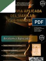 16 Anatomia Aplicada Maxilar y Mandibula
