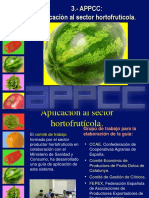 Aplicacion Haccp - Productos Hortofruticolas
