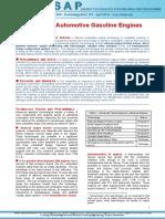T01-Adv_gasol_eng-GS-AD-gct.pdf