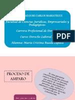 Diapositivas Del Proceso de Amparo