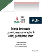 12POTENCIAL ACEITE-GAS EN LUTITAS MEXICO vpubf.pdf