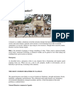 DISASTERS Presentation