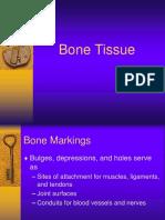 Bone Tissue24