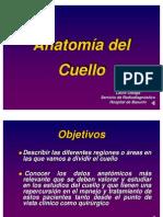 anatomia_cuello_oleaga