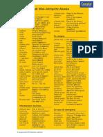 Langenscheidt -Mini intérprete .pdf
