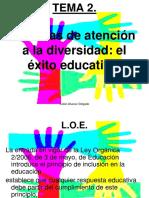 ANEAE.pdf