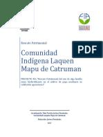 Rescate Pratrimonial Lauquen Mapu de Catruman