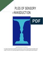 Transducción sensorial