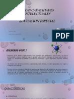 ALTAS CAPACIDADES INTELECTUALES