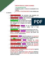 TEMA 1 BIOLOGIA.docx