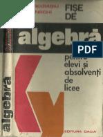 Fise de Algebra Pentru Elevi Si Absolventi de Licee - 1977 - 308 Pag
