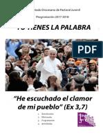 Programación Pastoral Juvenil 2017 2018.pdf