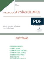 Vesicula y Vias Biliares-pre Enam 1