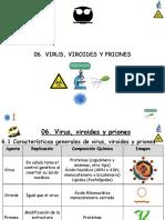 T-06-Virus-181