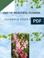 Flower Unit 12