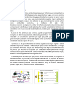 Historia de La Biomasa
