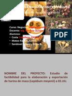EXPORTACION_DE_HARINA_DE_MACA_TRABAJO_FI.pptx