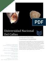 135504112 Informe Biologico Stramonita Chocolata Concholepas Concholepas Docx