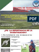 RESISTENCIA ANTIBIOTICA  FERIA UNIVERSITARIA.pptx
