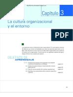 CULTURA ORGANIZACIONAL Y ENTORNO.pdf