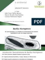 Bacillus-thuringiensis (2).pptx