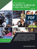 169092703-Guia-Avanzada-Laboral-Ss-2012.pdf