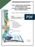 PRÁCTICA-GRUPAL-CONSERVACION-DE-SUELOS-ESTABILIDAD-DE-AGREGADOS.docx
