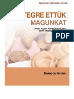 demecs_istvan_betegre_ettuk_magunkat.pdf