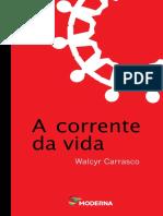 A Corrente da Vida - Walcyr Carrasco (1).pdf