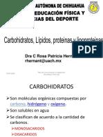 Bases de Bioquímica Para Nutrición