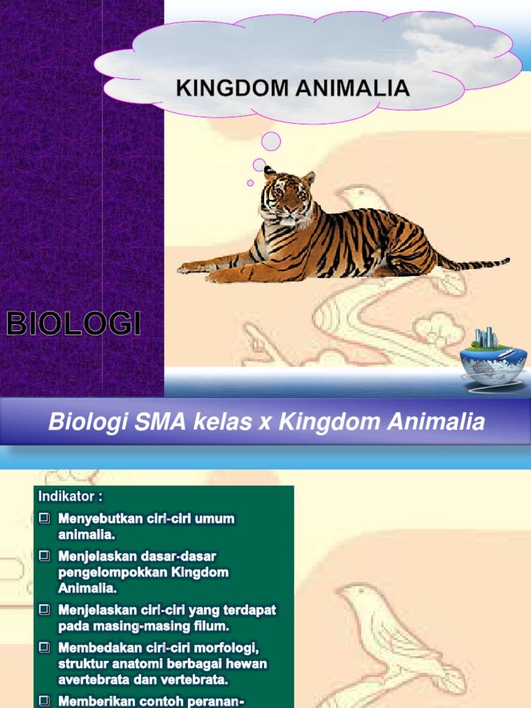 Image of: Peta Konsep Anzdoccom Bab Kingdom Animalia