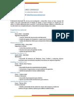 Curriculum Felipe 2017