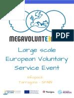 Large-scale European Voluntary Service (2)