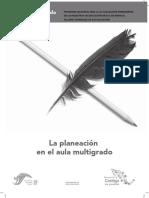 18417095-Esquema-de-Clase-Modelo-Multigrado.pdf