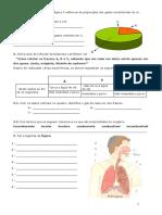 129565632 Ficha Avaliacao 6º Ano Ar e Sistema Respiratorio PDF