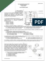 testesintermdios-100302041417-phpapp01.doc