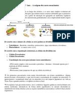 Biologia - Origem Dos Eucariontes