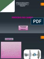 AMALIA PROCESO DE CAMPO.pdf
