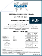 Austral Andina s.a.c.
