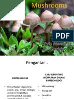 Bioteknologi Mushroom