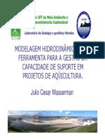 Modelagem Hidrodinamica Para Gestao Ambiental