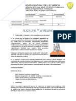 Slicknile y Wireline.docx