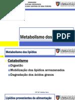 Aula 10_Metabolismo Lipídeos
