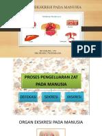 Presentation1.Pptx SISTEM EKSKRESI