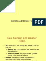 gender and gender roles.ppt