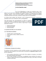Fisiologia Apr Renal 20