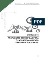 [CAP VII-PAT] Propuestas Específicas Para El Acondicionamiento Territorial