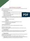 Physio Kidneys