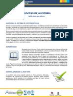 procesoauditoria ii.pdf