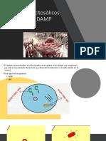 Receptores Citosólicos Para PAMPY DAMP 1